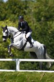 26/06/2011 HICKSTEAD ENGLAND, RICHI RICH 111 ridden by Guy  Williams (GBR)  competing in the Carpetr