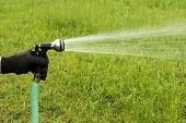 Garden Hose Spray