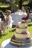 Closeup of weeding cake with guests sitting in background