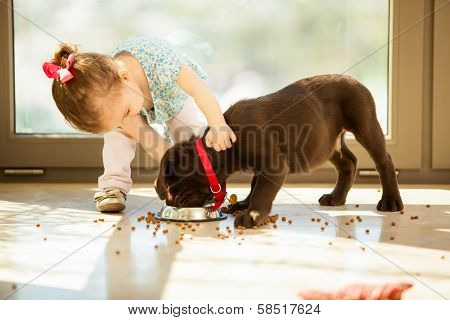 Cute little girl feeding her puppy poster