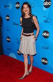 PASADENA, CA - JULY 19: Wendie Malick at the Disney ABC Television Group All Star Party on July 19, 2006 at Kidspace Children's Museum in Pasadena, CA.