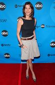 PASADENA, CA - JULY 19: Wendie Malick at the Disney ABC Television Group All Star Party on July 19,