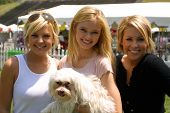 WOODLAND HILLS - APRIL 30: Kirsten Storms, Sara Paxton and Farah Fath at the Nuts For Mutts Dog Show