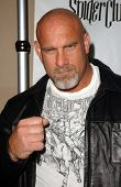 HOLLYWOOD - APRIL 30: Bill Goldberg at the Larpy Awards at Avalon on April 30, 2006 in Hollywood, CA
