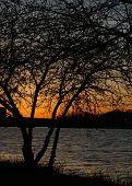 Charles River At Dusk