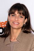 Amanda Peet at the
