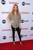 Darby Stanchfield at the