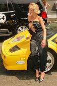 Janell Morlock at the Bullrun Rally 2004 in Hollywood, California. 06-05-04