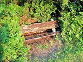 Old Bench In Park At Dusk