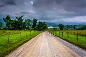 picture of cade  - Dirt road on a foggy morning at Cade - JPG