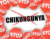 stock photo of gnat  - Vector illustration of stop chikungunya epidemic concept - JPG