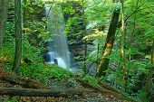 Matthiessen State Park Waterfall Illinois