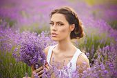 image of lavender field  - romantic portrait of beautiful woman on the lavender field - JPG