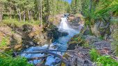 Silver Falls, Ohanapecosh River, Mount Rainier National Park, WA