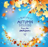 Autumn leaves on blue sky with place for text. Beautiful seasonal background