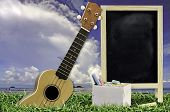 Ukulele with blue sky and Blank Blackboard on green grass