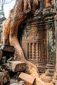 Ancient temple complex Ta Prohm, Siem Reap, Cambodia