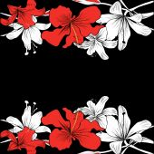Black background with Hibiscus and Lily frame