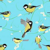 titmouse pattern with flowers