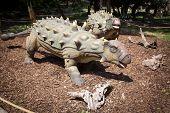 Realistic Model Of Dinosaur Ankylosaurus