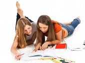two young happy student girl work on laptop