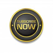 Subscribe Now Glossy Shiny Circular Vector Button