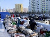 Nadym, Russia - March 15, 2008: Trading In Meat And Fish On The Street.