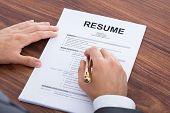 Businessman Analyzing Resume At Desk