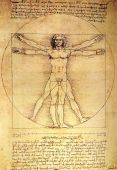 stock photo of leonardo da vinci  - Photo of the Vitruvian Man by Leonardo Da Vinci from 1492 on textured background.