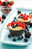 berries tart