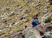 image of anza  - Male and female hikers in Anze Borrego desert look to distance - JPG