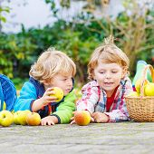 Two Adorable Little Children Eating Apples In Home's Garden, Outdoors