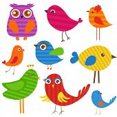 Set of cute multicolored striped  birds. Owl, sparrow, parrot, dove and other cartoon birds illustration