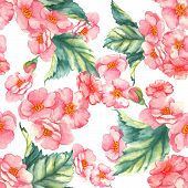 pic of wild-brier  - Beautiful watercolor seamless pattern with tender pink brier flowers and leaves on the white background - JPG