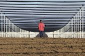 stock photo of hail  - Young engineer walking on future orchard with hail protective net - JPG