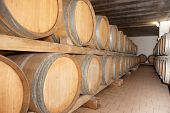 Barrels at winery