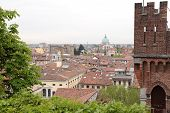 Roofs Of Udine, Italy
