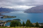 New Zealand 24