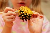 The child painting pinecone