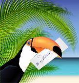 Vector Toucan' head with Valentine card