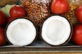 Tasty organic coconuts at local market, Kolkata, India