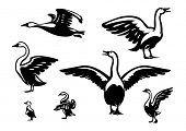 Set of ducks. Vector design elements in the logo style