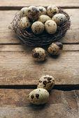 image of bird egg  - Bird eggs in nest on wooden background - JPG