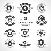 stock photo of leo  - Vintage Lion Logotypes set mascot emblem symbol - JPG