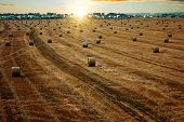 pic of hay bale  - End of day over field with hay bale  - JPG