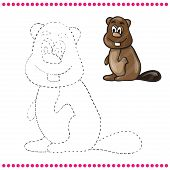 foto of beaver  - Connect the dots and coloring page  - JPG