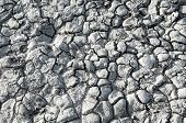 picture of drought  - Texture of the salt of the earth - JPG