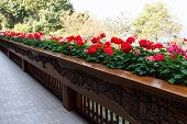 foto of bannister  - flowerbed decorating on the wooden bannister of the terrace - JPG