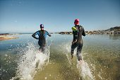 stock photo of triathlon  - Two athletic swimmers entering the water with their wetsuits on - JPG