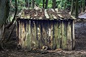 stock photo of mud-hut  - Farming shed in the european forest - JPG